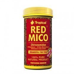 larvas de mosquito tropical red mico