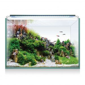 kit acuario aquascape